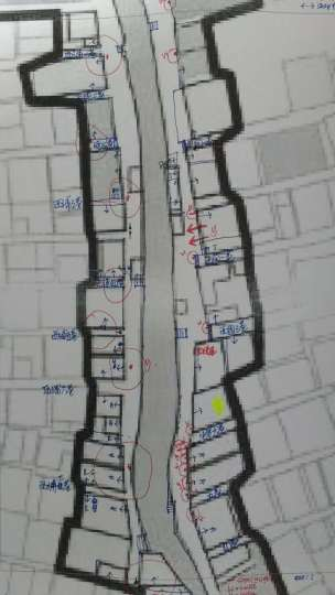 Street access, street name, pier locations, tree locations and canopy coverage. location of treets